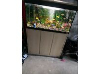 2-3 foot fish tank for sale