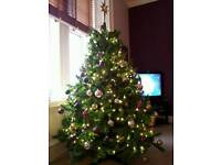 6ft Christmas Tree from Dobbies