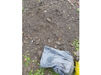 Free soil, can deliver if very local
