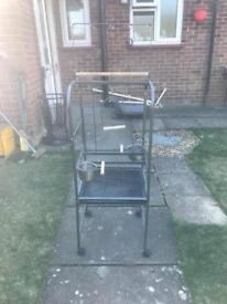 Parrot Bird Stand For Sale
