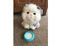 Little Live Pets- Toy Cat and Bowl