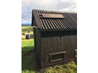 100 bird poultry house with its own solar powered lighting systems