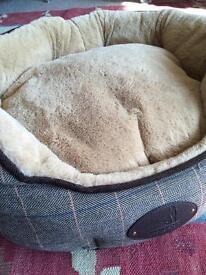Puppy essentials bundle