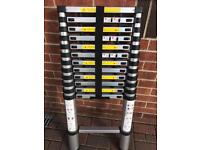 TELESCOPIC LADDER 3.8m