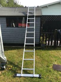 Multiway Ladder