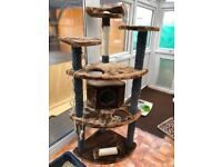 Cat Trees & Cat Scratching Posts