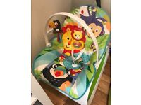 Brand new Fisher price infant to toddler chair RRP £59.99