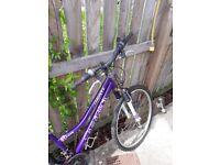 2 x Girls Mountain Bikes