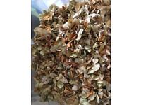 Dried hydrangea petals / confetti