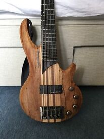 Hudson 5 string Bass Guitar with case