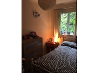 Bright single room in lovely modern flat