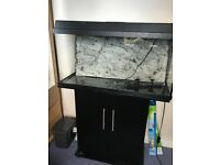 Juwel fish tank 112l with cabinet and accesories