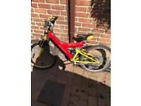 Dynamix mountain bike