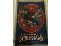 Kids Spider man rug