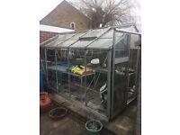 Free to disassemble and collect partially glazed greenhouse 12ft x 6ft