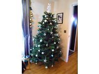 Beautiful Christmas Tree.