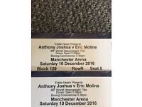 X2 Anthony Joshua v Eric Molina tickets