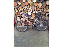 Silver Magna bike (adult)