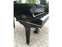 "Black baby grand piano 4"".6ft