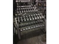 TECHNOGYM DUMBBELLS AND OLYMPIC WEIGHT DISCS FORSALE!!
