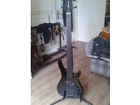 Bass guitar fretless