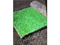 Quality lawn turf