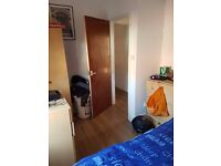 close to city centre flatmate wanted