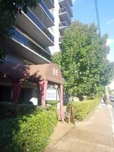 66 Spadina Road - 1 Bedroom Apartment for Rent
