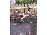 Mountain Bike (to fix chain)