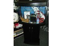 Fish Tank Interpet Fish Pod 64L with Stand & Accessories