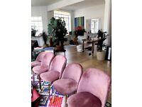 Beautiful Pink Velvet Chairs