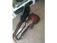 Rare Farida James Morrison signature model electro acoustic guitar+Case+LR Baggs p.up 1of25 made.