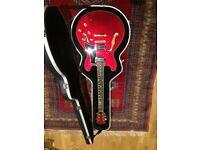 Freshman F335 Hollow Bodied Electric Guitar