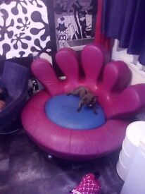 Italian chair retro unusual pink , poltromec