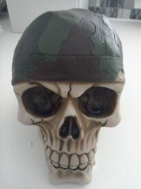 New boxed skull