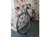 Raleigh Triathlon Criterium 12 Bike £100