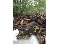 Logs...FREE TO COLLECT