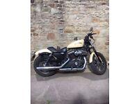 Harley Davidson Iron XL 883 2015 Sand Camo