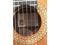 Classical Guitar Rodriguez Mod B
