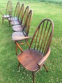 6 Ercol Dining Chairs Quaker design inc 2 Carvers