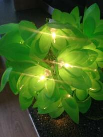 String of leafy fairy lights