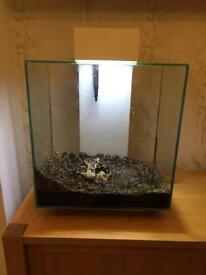 Fluval edge 46l fish tank complete