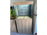Juwel lido 120 beech tropical marine cold water fish tank aquarium (Drivery install