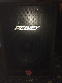 Peavey Eusosys 2 Speakers
