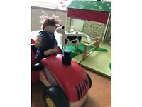 Tidio Farm Set with tractor and animals
