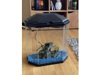 Fish tank, BRAND NEW! £50