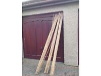 75pce of Bamboo Canes, 8ft Long