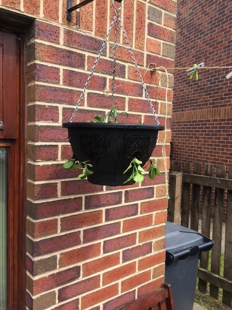 Quality Hanging Baskets In Bradford West Yorkshire Gumtree