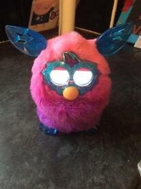 Pink and blue furby