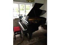 Bluthner Boudoir Grand Piano, Contemporary Black, a truly stunning example